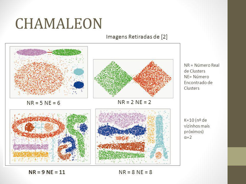 CHAMALEON Imagens Retiradas de [2] NR = 5 NE = 6 NR = 2 NE = 2